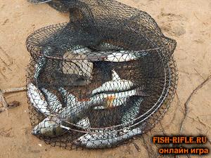 Байки о рыбалке, истории
