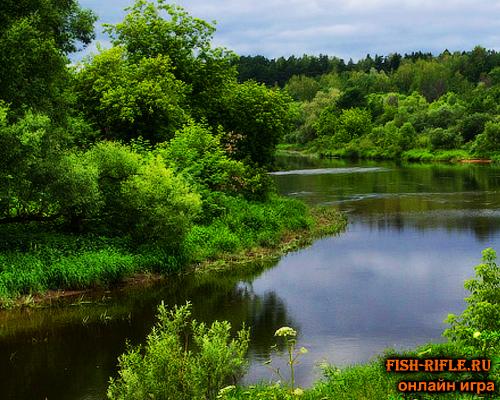 Рыбалка на реке Сить
