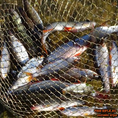 Чебак на озере Иткуль